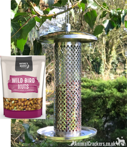FEEDER + NUTS! Large Heavy Duty stainless steel metal wild bird NUT feeder +FREE 1KG BAG NUTS!