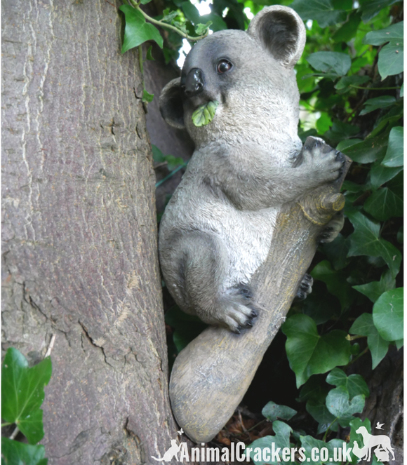 Koala on Branch novelty garden ornament/ statue, fabulous Koala lover gift
