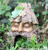 Frog Toad House Face in Tree Stump design weatherproof garden or pond decoration
