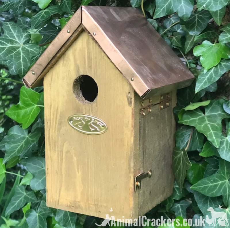 Copper Roof Bird house nest box for WREN & other small garden birds chunky wood