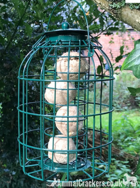 Green Squirrel Proof Wild Bird metal SUET FAT BALL Feeder