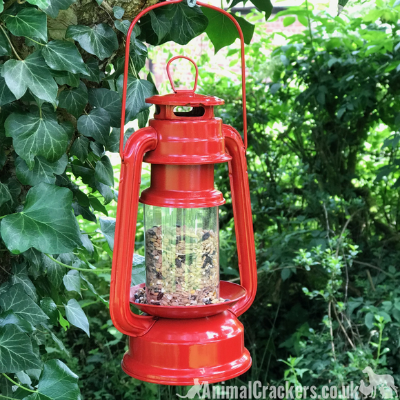 Red metal old oil Lantern style wild garden bird seed feeder bird lover gift
