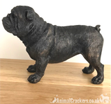 20cm bronze effect English Bulldog ornament figurine Bull Dog lover gift, boxed