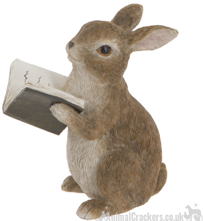 Rabbit Reading Book indoor ornament garden decoration Hare or Book lover gift