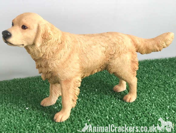 Golden Retriever figurine ornament quality realistic Leonardo range. Gift boxed.