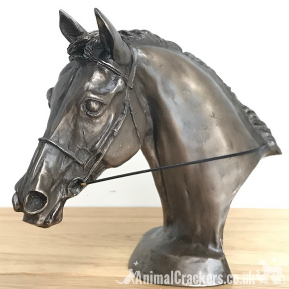 Race Horse Eventer Head bust sculpture in Cold Cast Bronze, by Harriet Glen