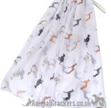 Ladies lightweight Greyhound scarf sarong in a choice of colours
