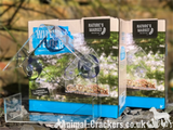 Watch birds feed - pack of 2 clear plastic Window bird seed feeders, easy attach, gift boxed