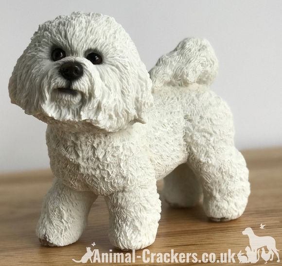 Bichon Frise ornament figurine quality lifelike Leonardo sculpture, gift boxed.