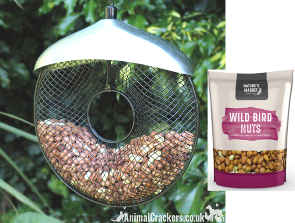 FEEDER + NUTS! Heavy duty all metal Donut shaped NUT feeder WITH 1kg NUTS, garden bird lover gift