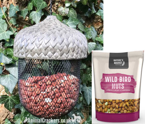 FEEDER + NUTS! Novelty ACORN bird NUT FEEDER WITH 1KG NUTS. Sturdy metal & heavy resin feeder. Great bird lover gift