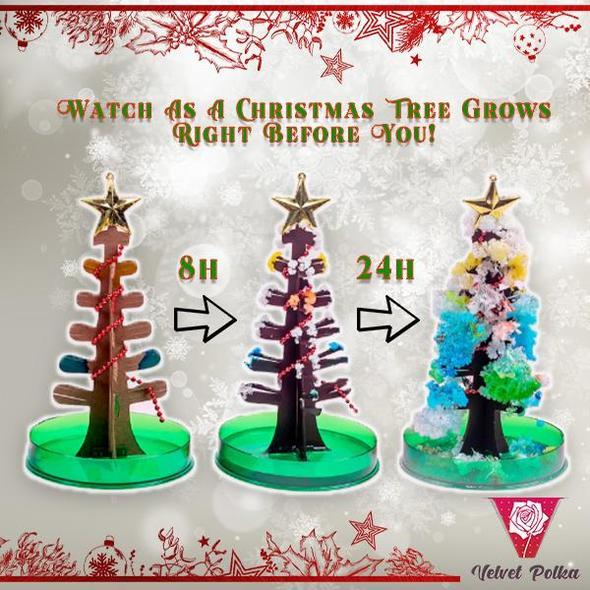 50%OFF-Magic Growing Christmas Tree
