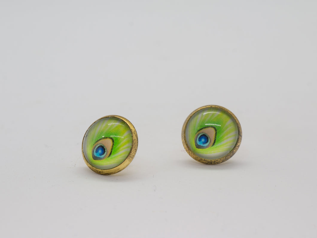 Ohrstecker feather eye green yellow