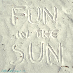 Feature-326-JC-Fun-In-The-Sun