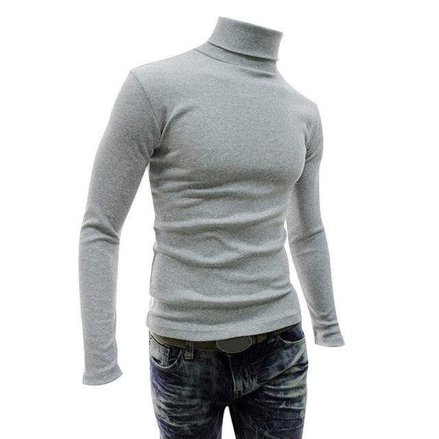 Solid Light Wool Turtle Neck Sweater
