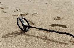 Metal Detecting: What's the Big Deal?