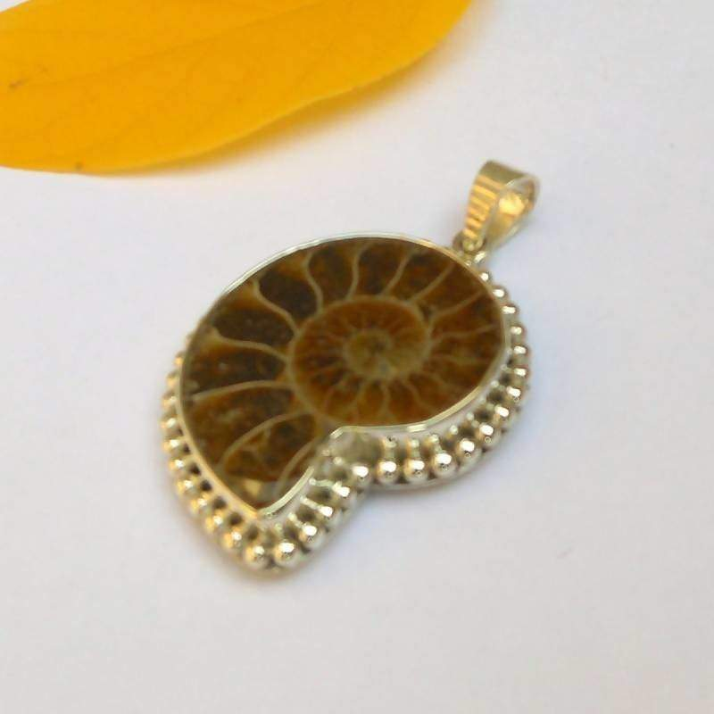 Necklaces Ammonite Fossil Pendant Necklace Shell 925 Silver Rare Gemstones Unique Jewelry