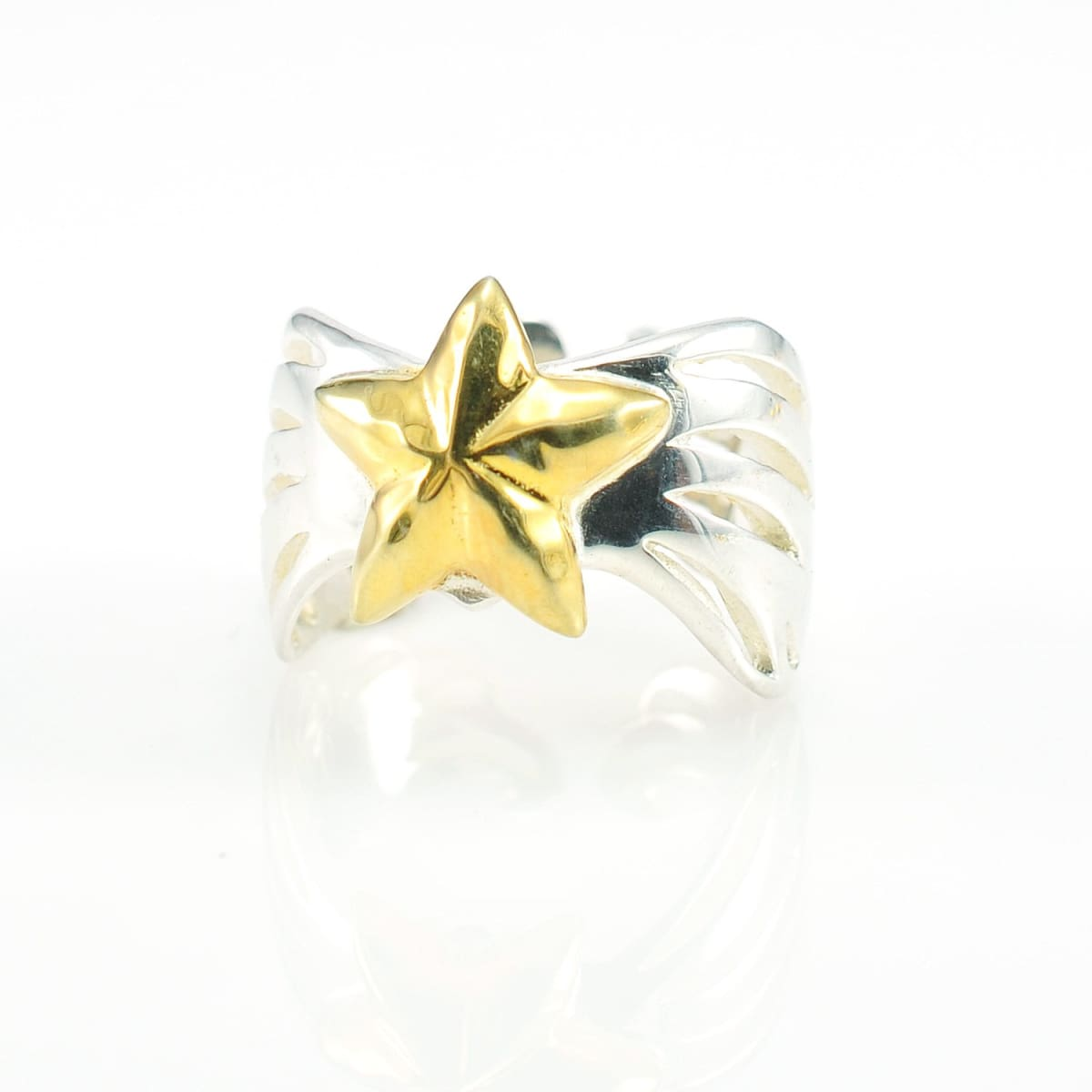 Guidance Wings- Star Ring