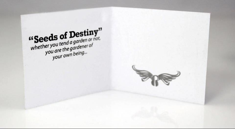 Rings Seeds of Destiny Ring