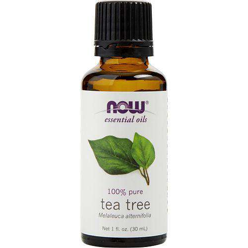 Essential Oils Now By Now Essential Oils Tea Tree Oil 1 Oz
