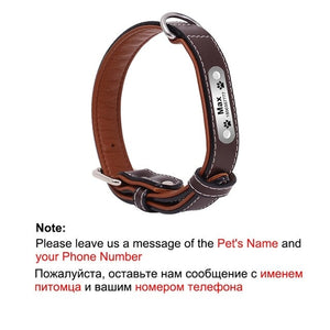 1 pc Customized Engraved Dog Collar Genuine