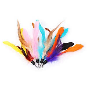10pcs/lot Colorful Cat Toy Feather Replacement For