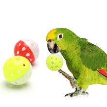 Load image into Gallery viewer, Pet Bird Toys Parrot Toys Hollow Ball With Bells