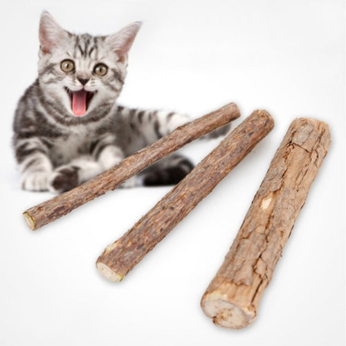 Cat Snacks Toothpaste Cleansing Wooden Day