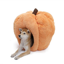 Load image into Gallery viewer, Hot Sale Funny Pumpkin Pet Rabbit Dog Bed Warm