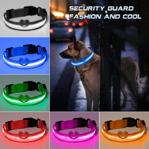 Nylon Pet  LED Pet dog Collar,Night Safety Flashing Glow In The Dark Dog Leash,Adjustable Dogs Luminous Fluorescent Collars