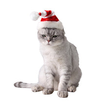 Load image into Gallery viewer, Pawstrip Fashion Christmas Dog Hat Small Animal
