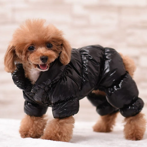 Pet Clothes Winter Warm Pet Down Coat Soft Cotton