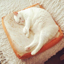 Load image into Gallery viewer, Toast Cat Pad
