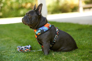 Oui Oui Frenchie Reversible Harness - Camo