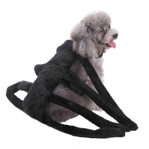 Spider Dog Costume For Small Dogs Cosplay