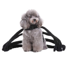 Load image into Gallery viewer, Spider Dog Costume For Small Dogs Cosplay