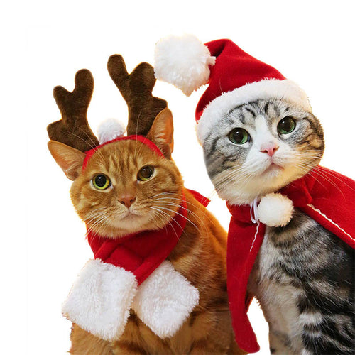 Newly Pet Dog Cat Scarf Cap Cloak Headband Set Gifts Christmas Party Winter Clothes