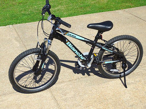 "Bianchi Duel 20"" Girls Teal and Black Young Adults Mountain Bike"