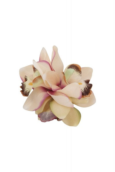 Collectif Hair Clip Aaliyah Orchid Cream