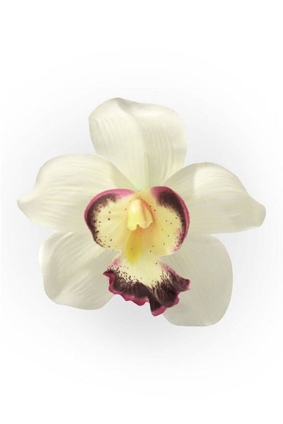 Collectif Orchid Ivory Hair Clip