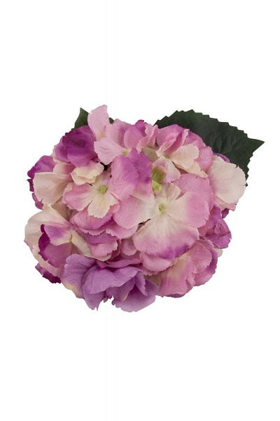 Collectif Hair Clip Hydrangea Purple