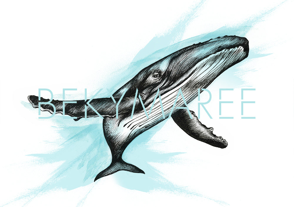 HARRY The Humpback Whale ~ Digital Artwork - Bekymaree