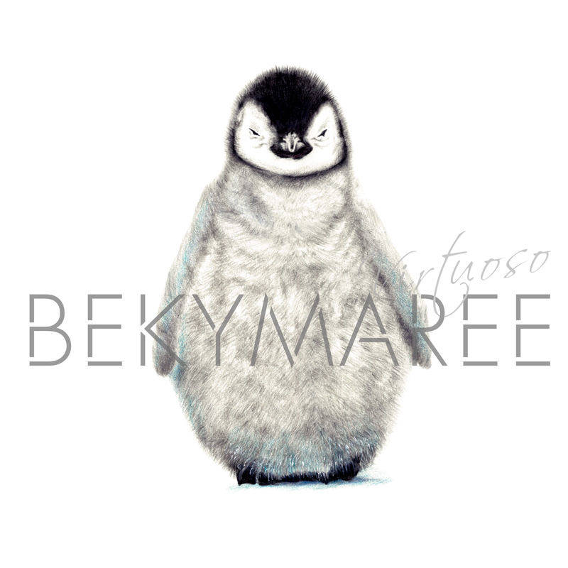 Penguin Print - Bekymaree