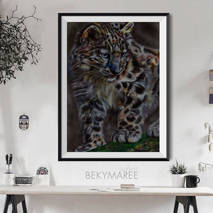 Snow Leopard #1 - Bekymaree