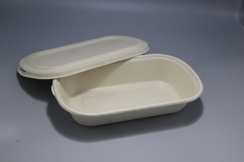 Baggase Food Container