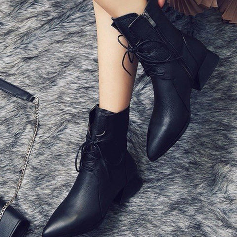 Brief Women Pointed Toe Mid Heel Boots