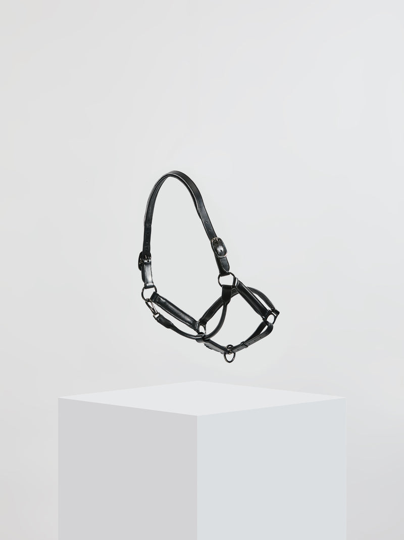 Kingsley Leather Halter