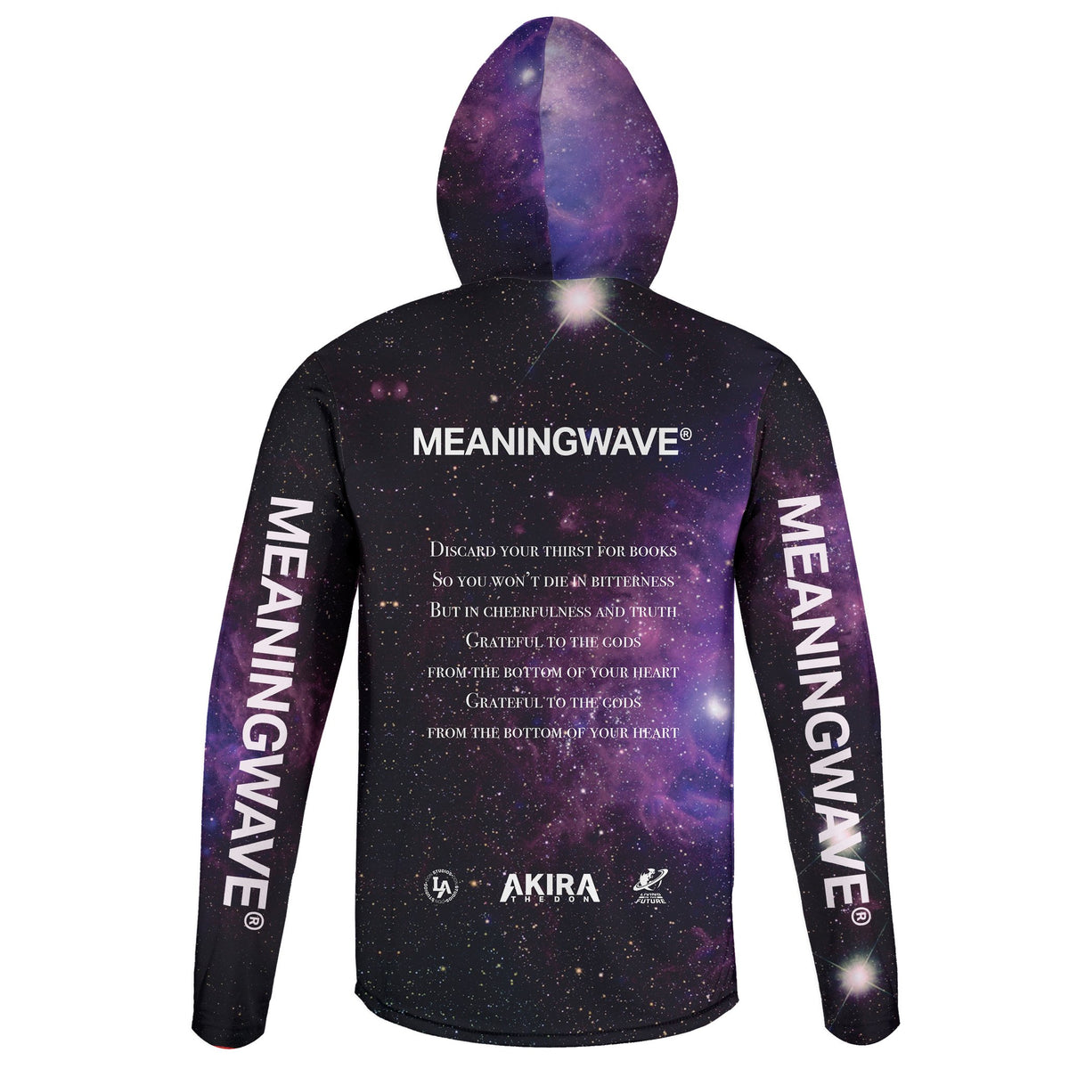 AKIRA THE DON & MARCUS AURELIUS - GRATEFUL TO THE GODS Lightweight Hoodie | meaningwave.com