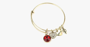 July Birthstone Charm Bangle - FREE SHIP DEALS