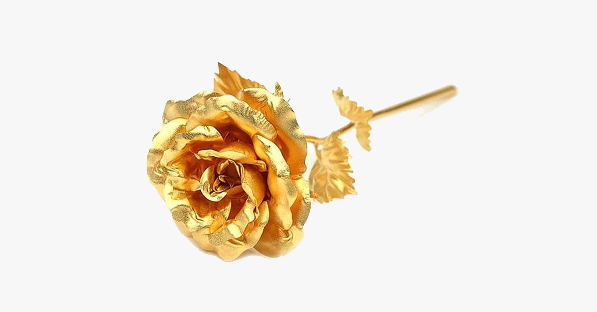 24K Forever Gold Rose - FREE SHIP DEALS